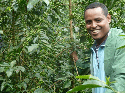 Coffee farmer in western Ethiopia.