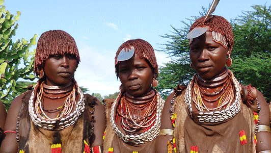 Women of the Hamer Tribe in Ethiopia Omo Valley